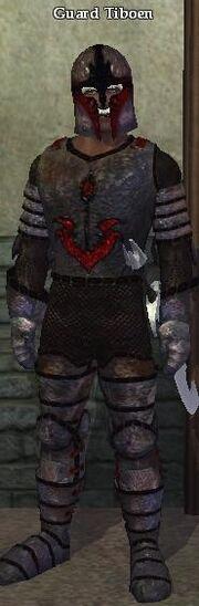 Guard Tiboen