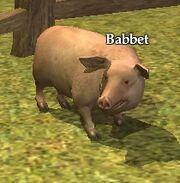 Babbet