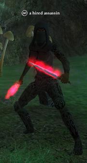 A hired assassin (Lesser Faydark)