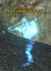 A Redbeard miner