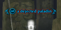 A dejected paladin