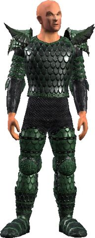 File:Guide's Chainmail (Armor Set).jpg