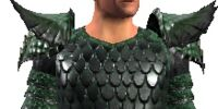 Guide's Chainmail (Armor Set)