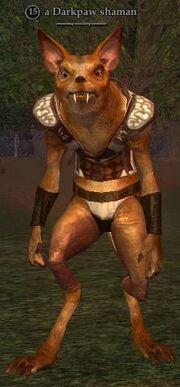 A Darkpaw shaman