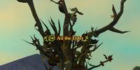 Ail the Elder