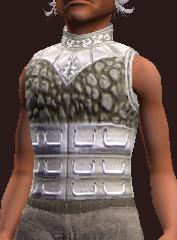 Rainkeeper's Blood Moon Tunic (Equipped)