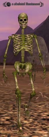 Skeletal lieutenant