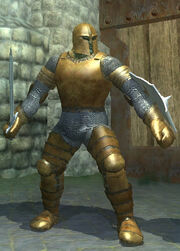Coral Coated Plate Armor - Equipped
