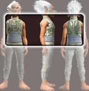 Vagabond's Chain Tunic (Equipped)