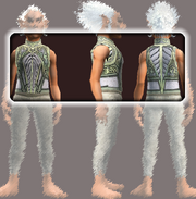 Naturewalker's Tunic (Equipped)