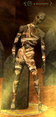 A mummy (Chronoportal)