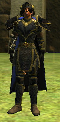 T9 Chain DPS - Normal (Armor Set) (Visible, Male)