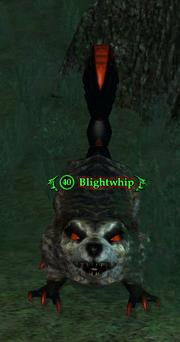 Blightwhip