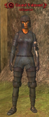 File:Guard Valmont.png