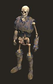 Skeleton Pirate Placed