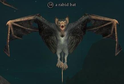 File:A rabid bat.jpg