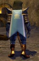 Cloak of Tranquility worn