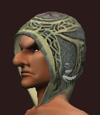 Thaumaturge's Cowl of the Archcaster (Equipped)