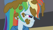 Rainbow Dash covered in cookie batter EG2