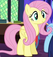 Pony Fluttershy ID