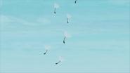 Dandelion petals float away in the wind EG2
