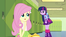 Twilight asks Fluttershy about the crown EG