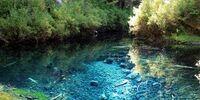 Wolf Plaza/The Creek