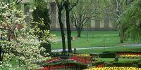 Liberty Park/Flower Gardens