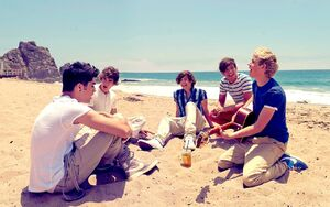 One Direction Beach Based On