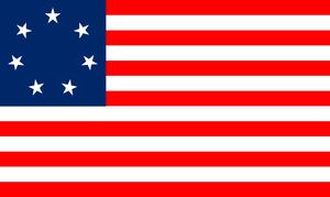 NUS Flag