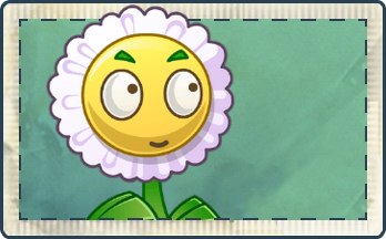 File:Daisy Seed Packet.png