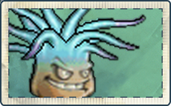 File:Electric Anemone Seed Packet.png