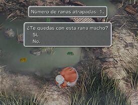 Caza de ranas ff9.jpg