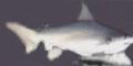 Miniatura de la versión de 09:59 1 may 2014