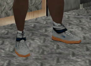Archivo:Zapatillas tira.jpg