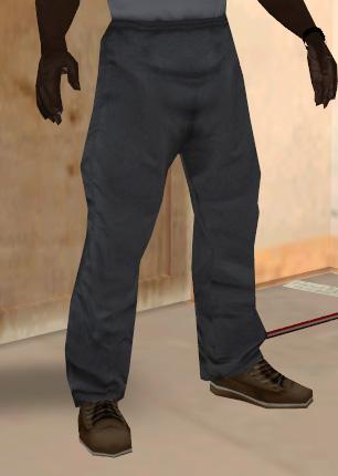Archivo:Pantalon chandal.jpg