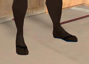 Archivo:Flip flops.jpg
