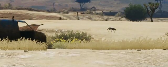 Archivo:Gtav-coyote2.jpg