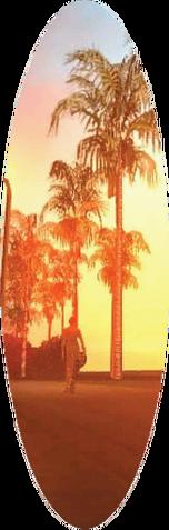 Archivo:Tabla de Surf en GTA SA.png