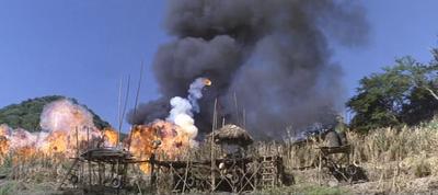 80th Vice. Desaparecida en Vietnam. 2ª parte Hierba XII