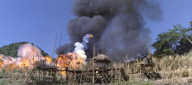 Archivo:80th Vice. Desaparecida en Vietnam. 2ª parte Hierba XII.png