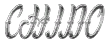 Archivo:Chino-GTAV-Logo.png