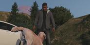 Gestión de riesgos Franklin y el Perro