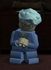 Madam Malkin Lego.jpg