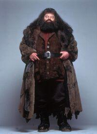 Hagrid apariencia