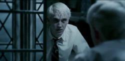 Draco en el espejo.jpg