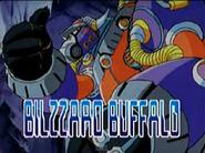 Blizzard buffalo present