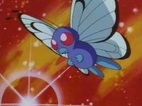 Archivo:EP015 Butterfree de Ash.png