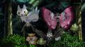 EP922 Pokémon del bosque.png