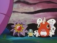 Archivo:EP061 Seaking Starmie y Squirtle.jpg